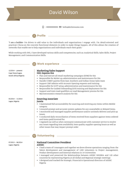Sales Support Resume Sample