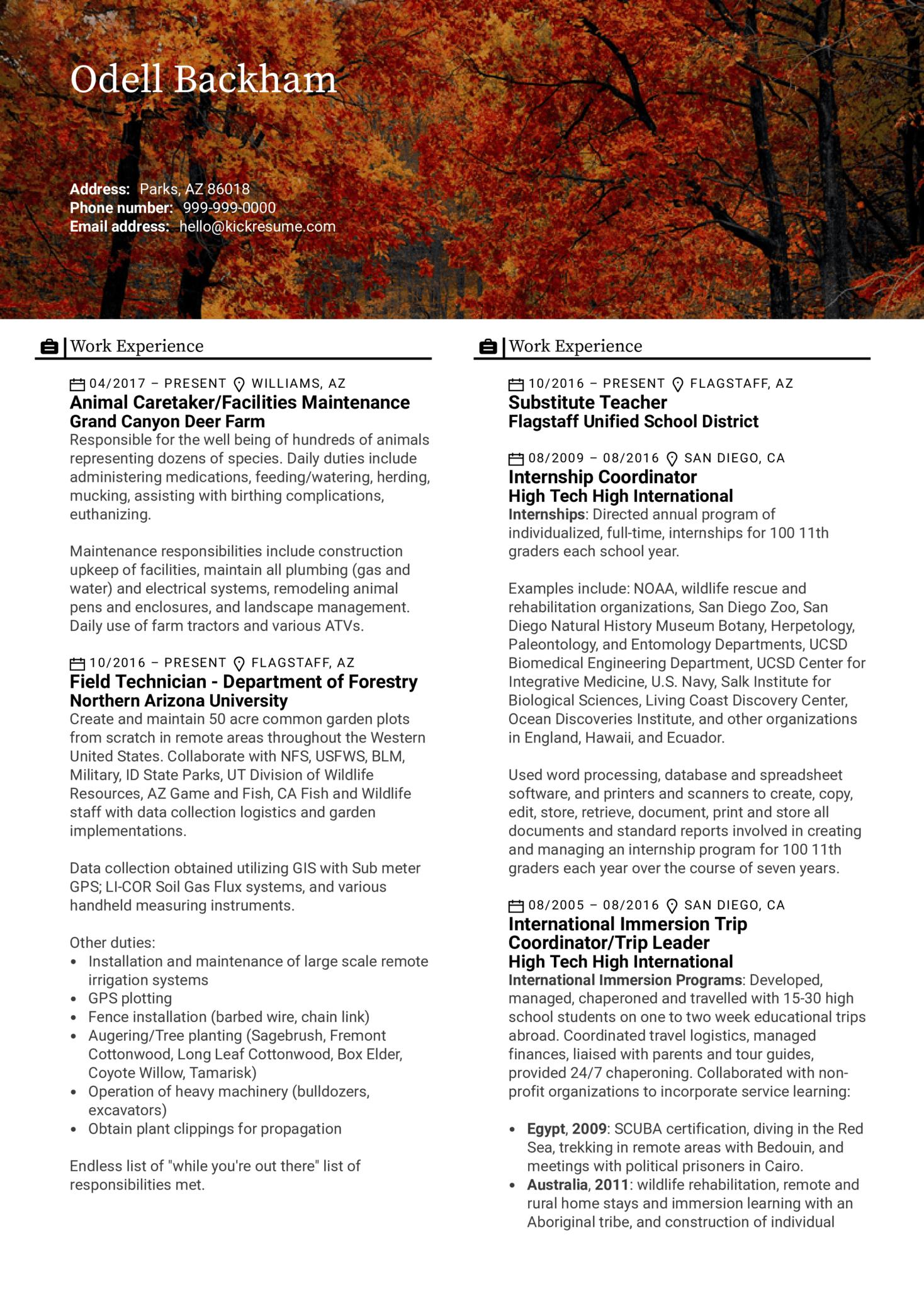 Field Technician Resume Template (parte 1)