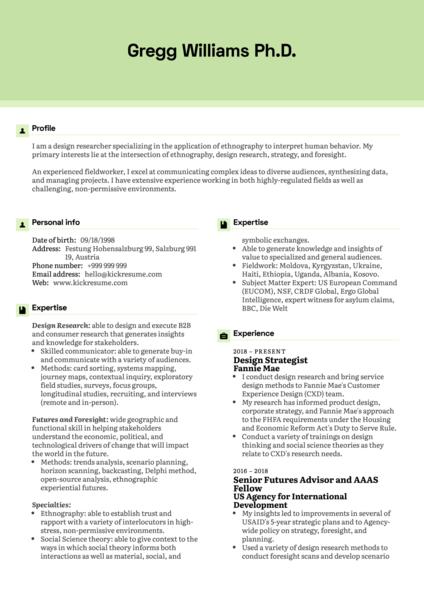 Design Strategist Resume Example