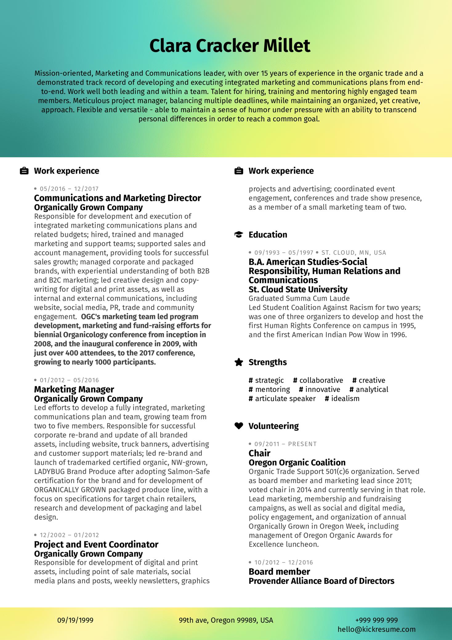 Marketing Analyst Resume Example (časť 1)