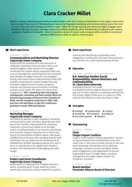 Marketing Analyst Resume Example