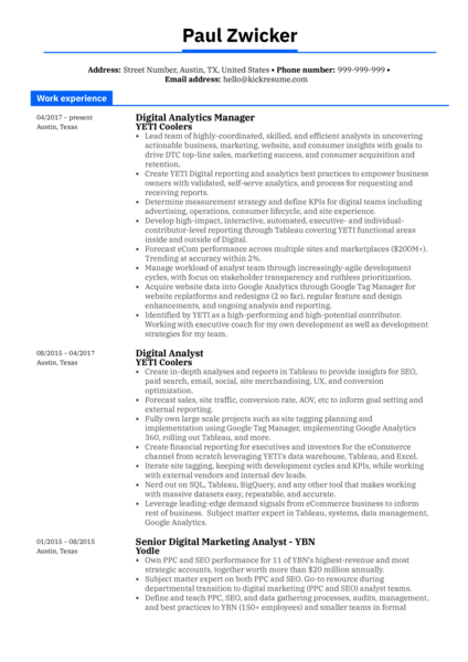 Nike Global Analytics Manager Resume Sample