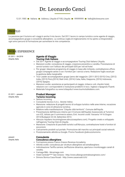 Sales Specialist Resume Example [IT]