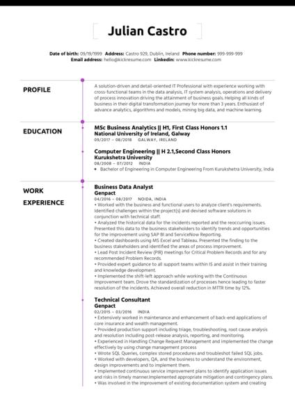 Business Process Analyst CV Sample