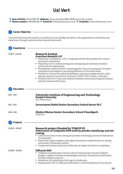 Software Analyst CV Example