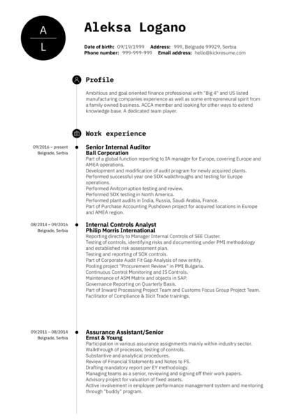 Senior Internal Auditor CV Sample