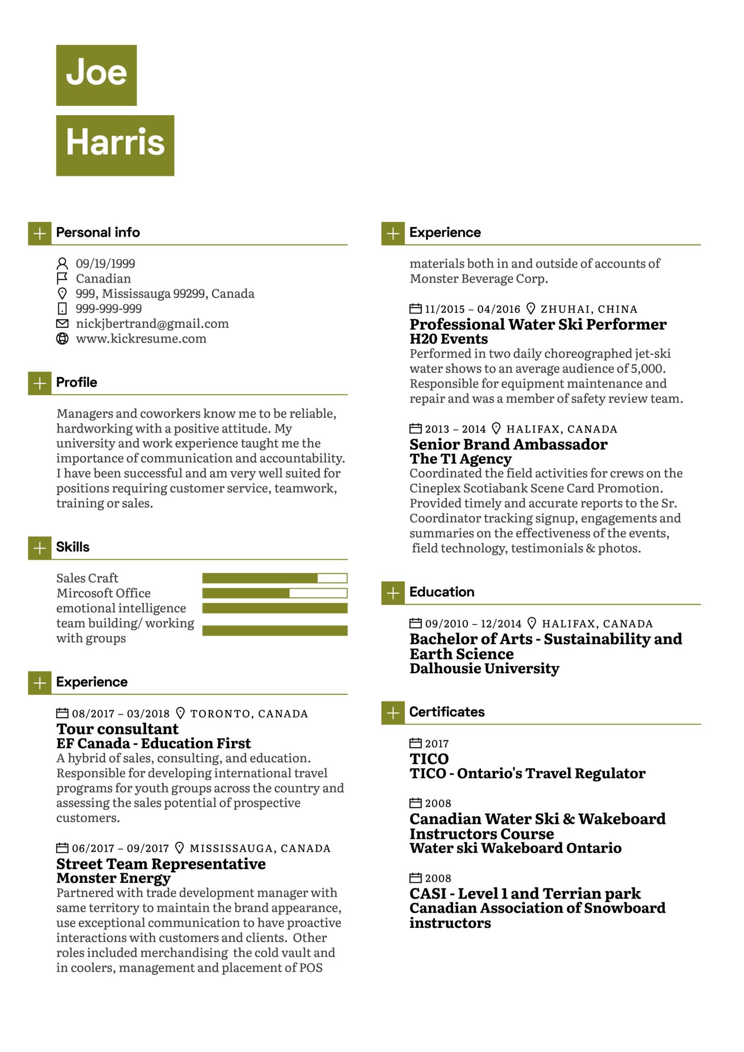 Sales and Customer Representative CV Sample (Parte 1)