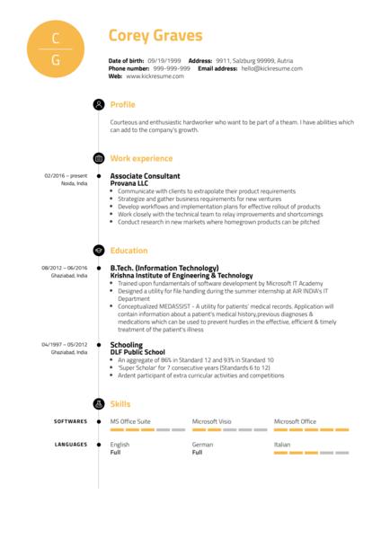Junior Business Analyst Resume Example