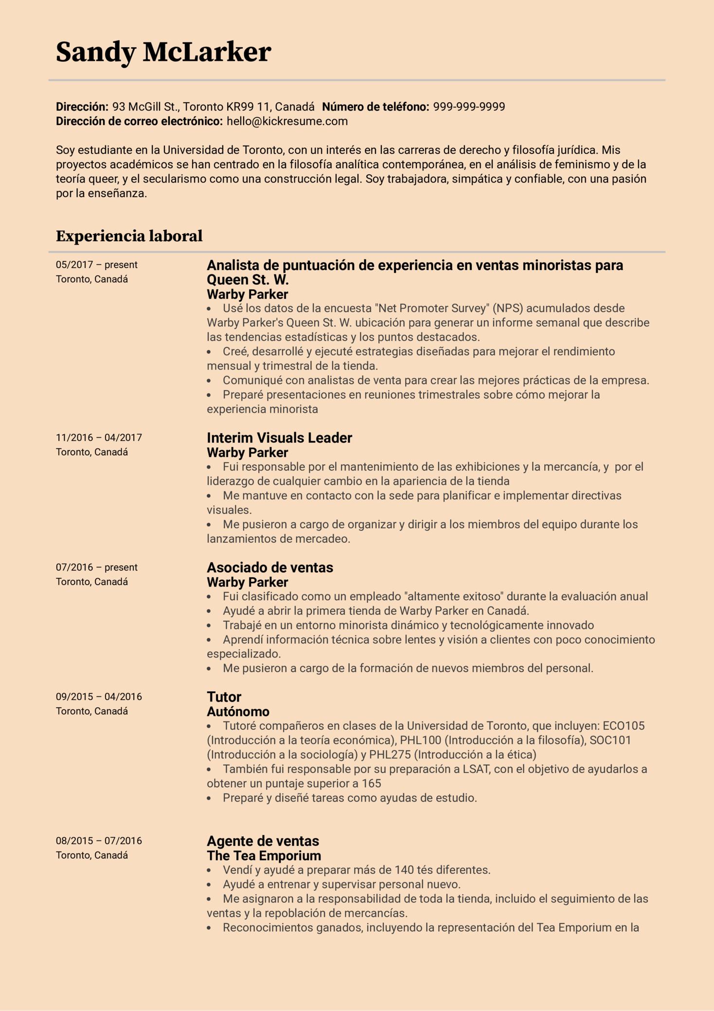 Analista con experiencia en minorista currículum ejemplo [ES] (Part 1)