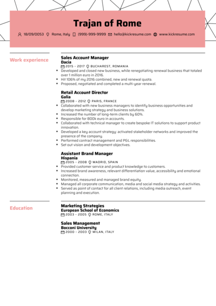 Sales Account Manager Resume Sample