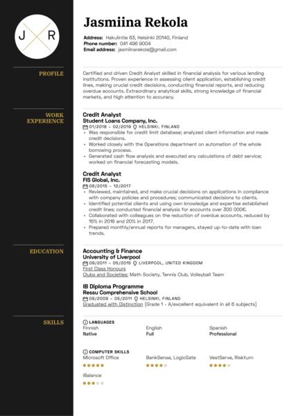 Credit Analyst Resume Example