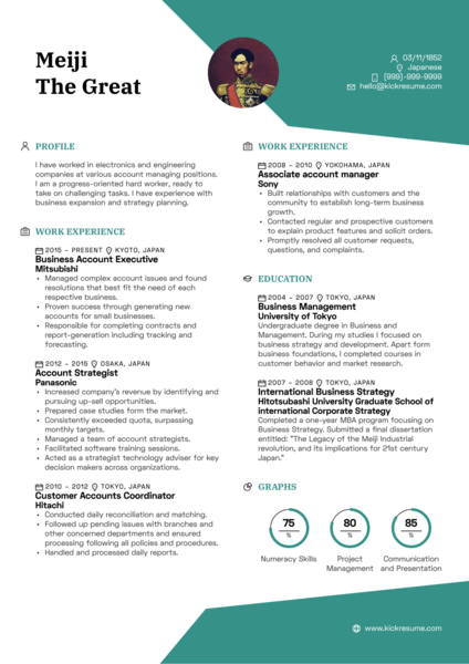 Business Executive Account Manager Resume Sample