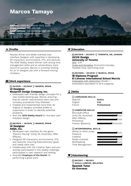 UI Designer Resume Example