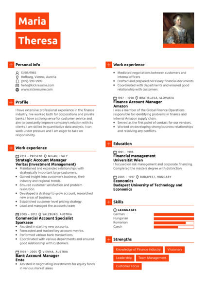 Finance Account Manager Resume Sample