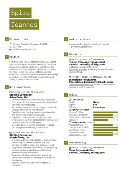 Staffing Consultant Resume Sample