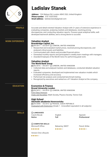 Valuation Analyst Resume Example