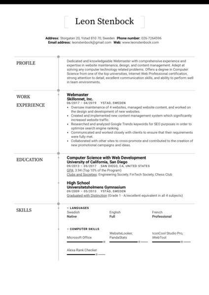 Webmaster Resume Example