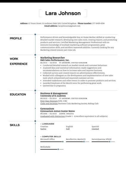 Stay At Home Mother Resume Example
