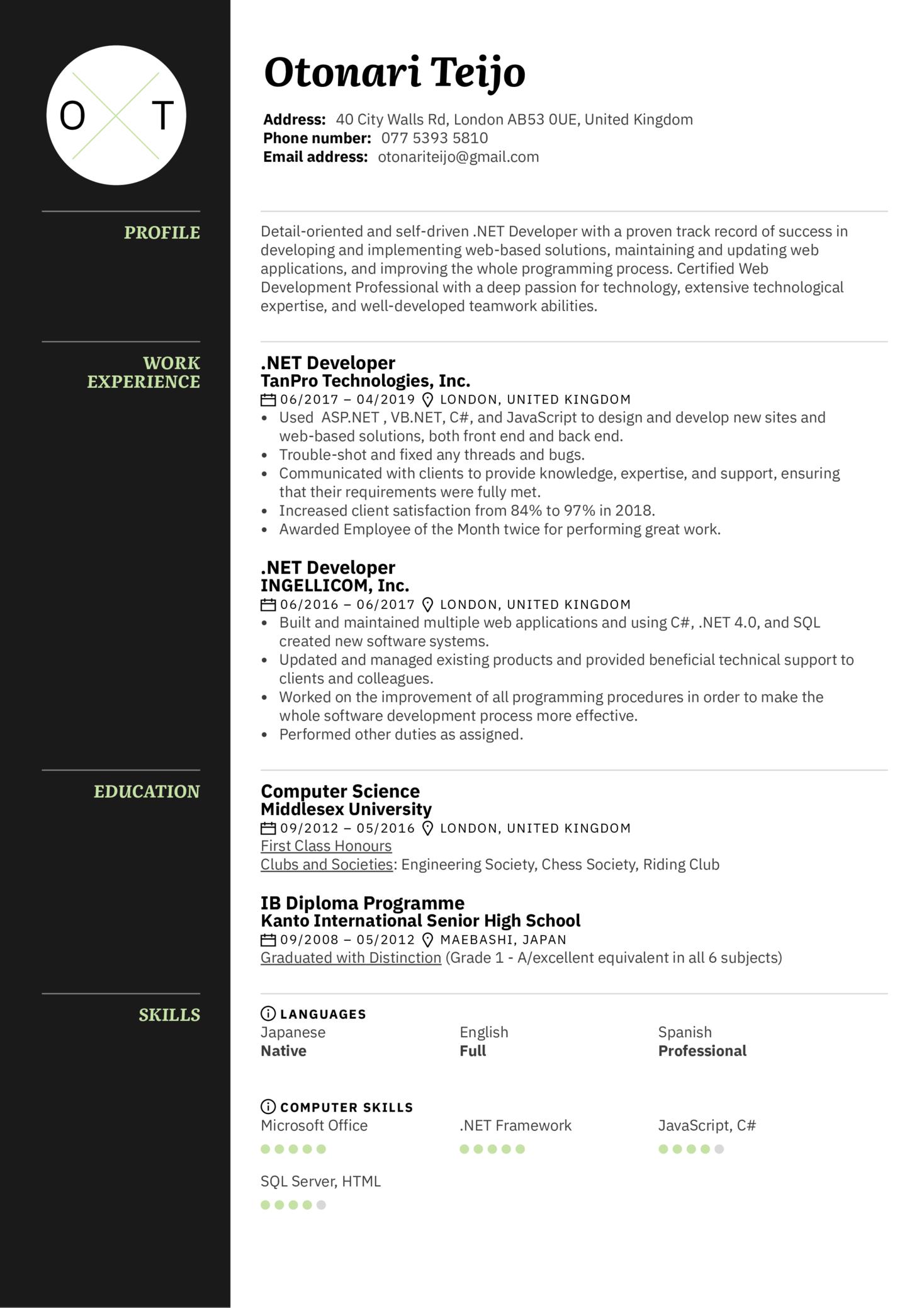 .NET Developer Resume Sample (Teil 1)