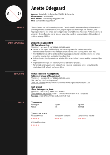 Employment Consultant Resume Example