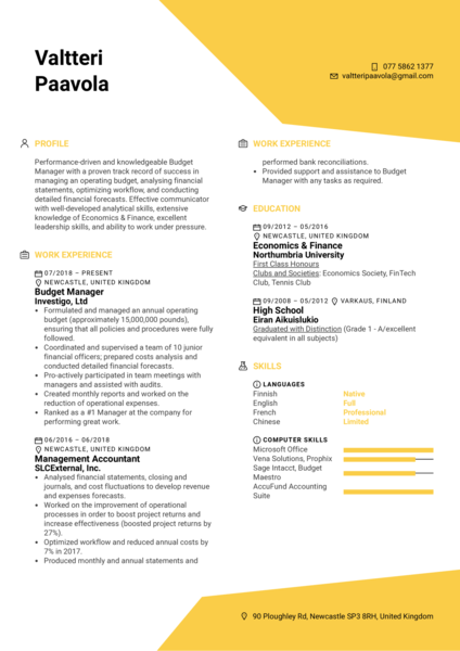 Budget Manager Resume Example