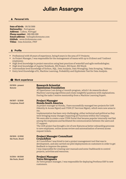 Senior Project Manager CV Example
