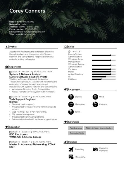 Junior Network Analyst CV Example
