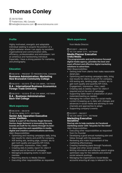 Senior Media Executive CV Example