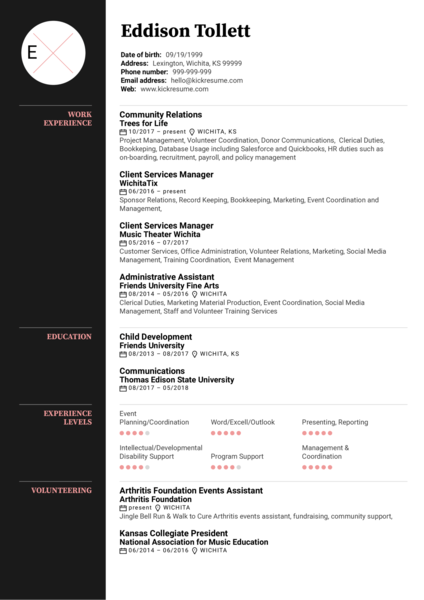 Project and Grant Manager Resume Example