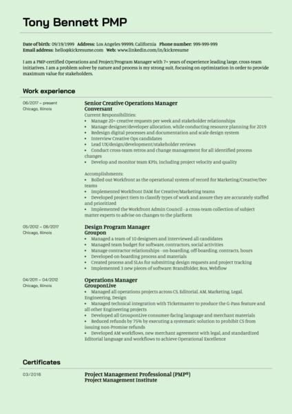 Senior Creative Operations Manager CV Example