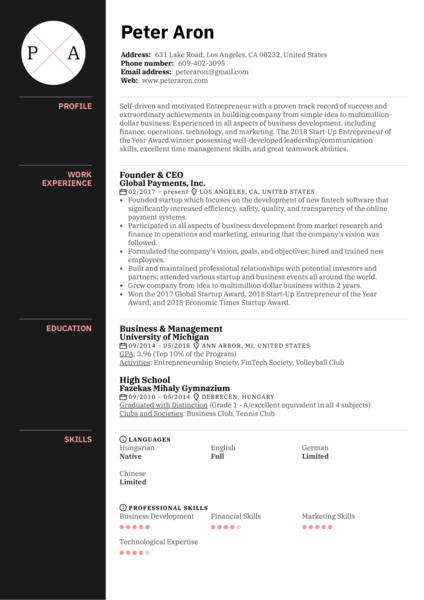 Founder Resume Example
