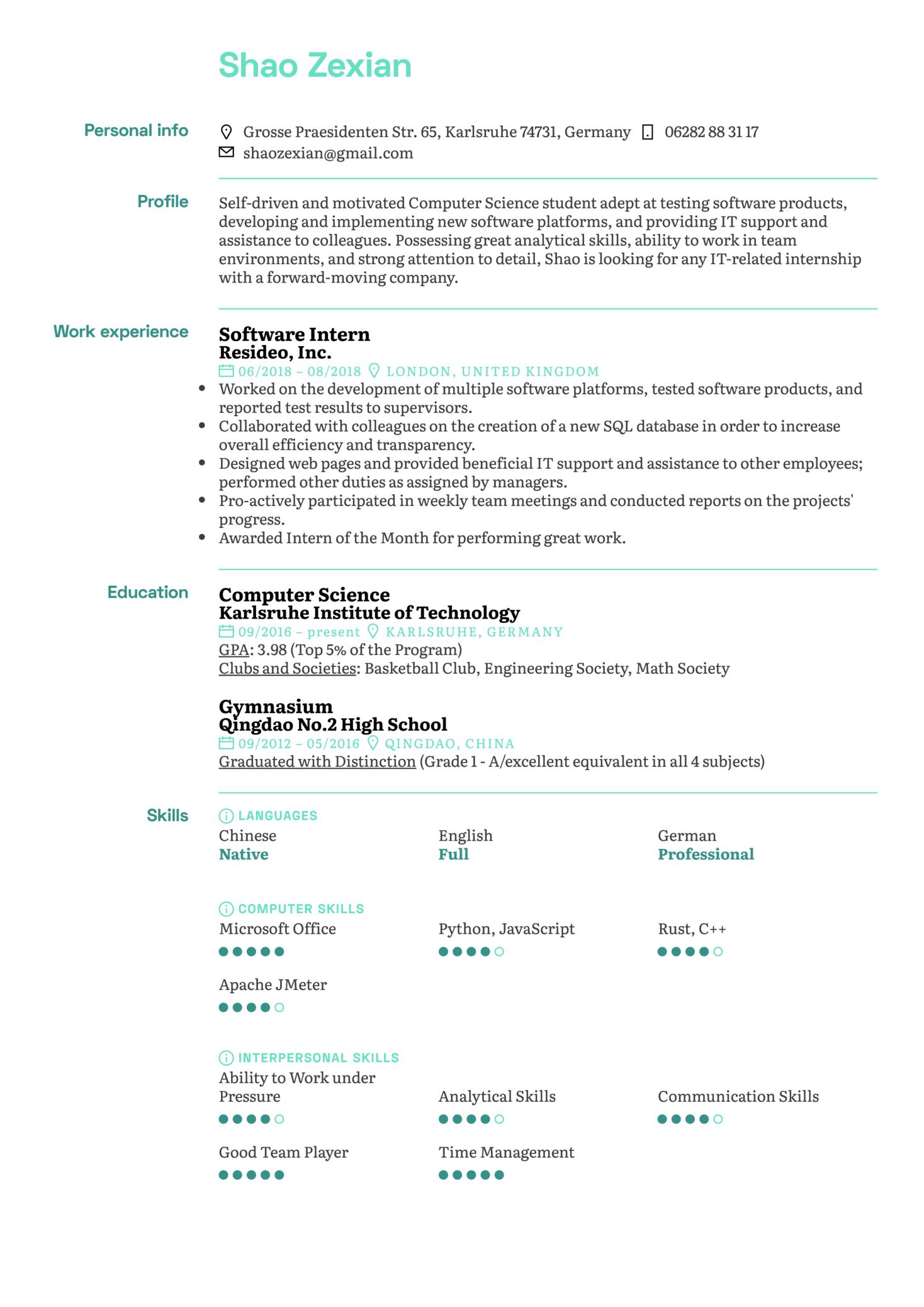 Software Intern Resume Template (Teil 1)