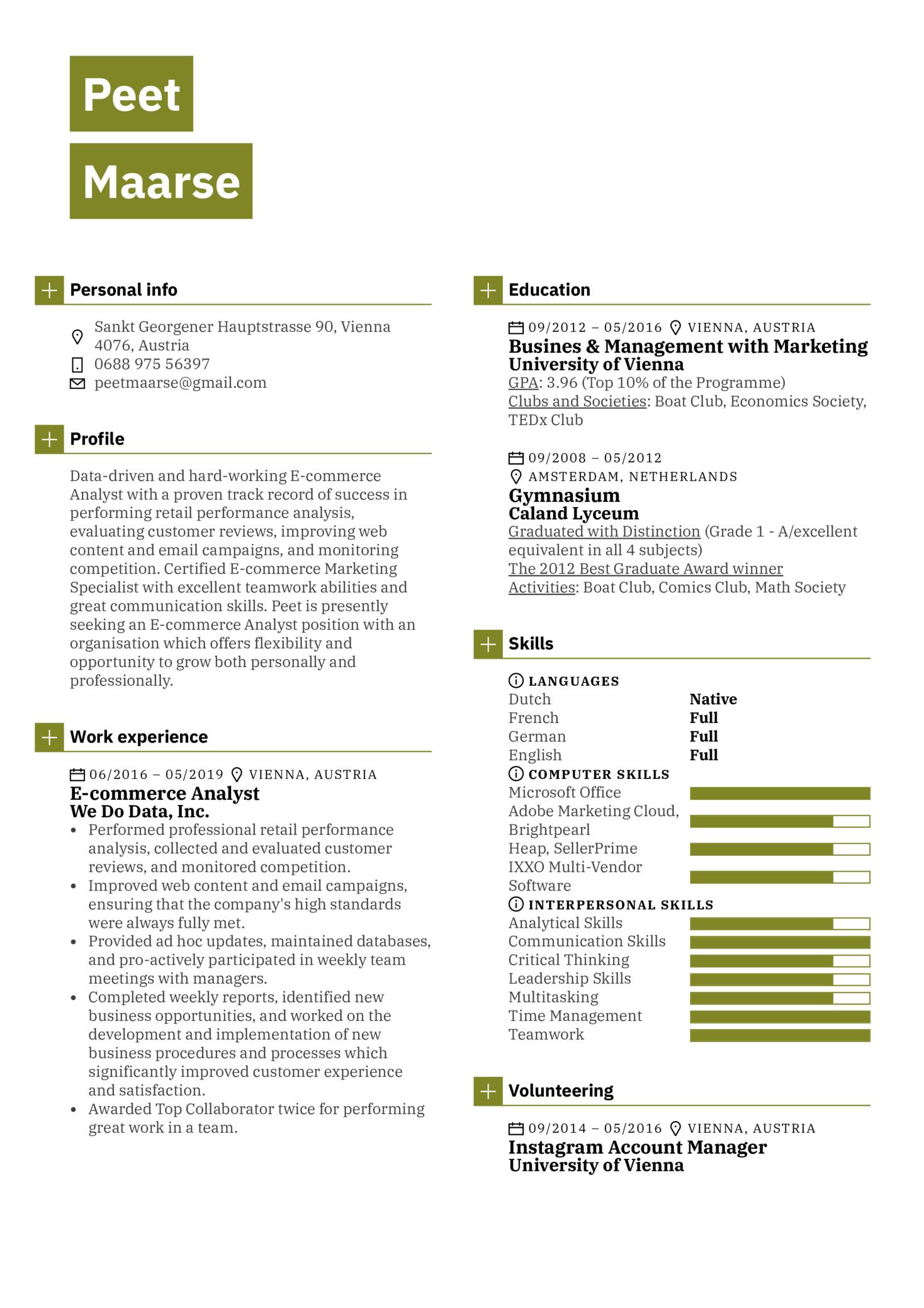 E-commerce Analyst Resume Sample (parte 1)