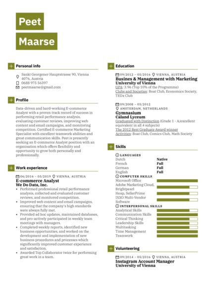 E-commerce Analyst Resume Sample