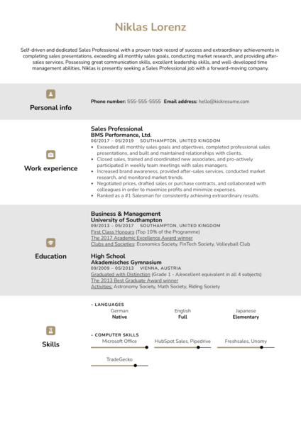 Sales Professional Resume Example