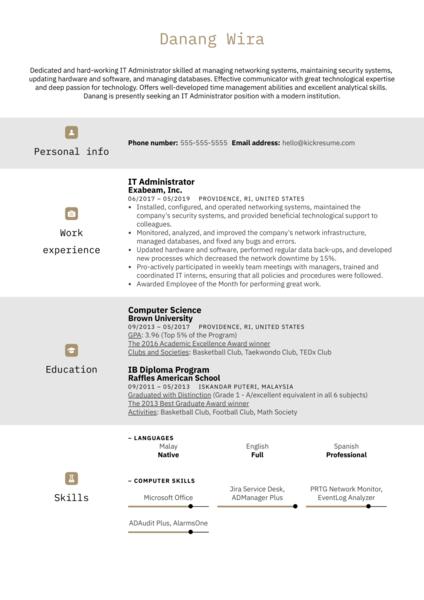 IT Administrator Resume Example