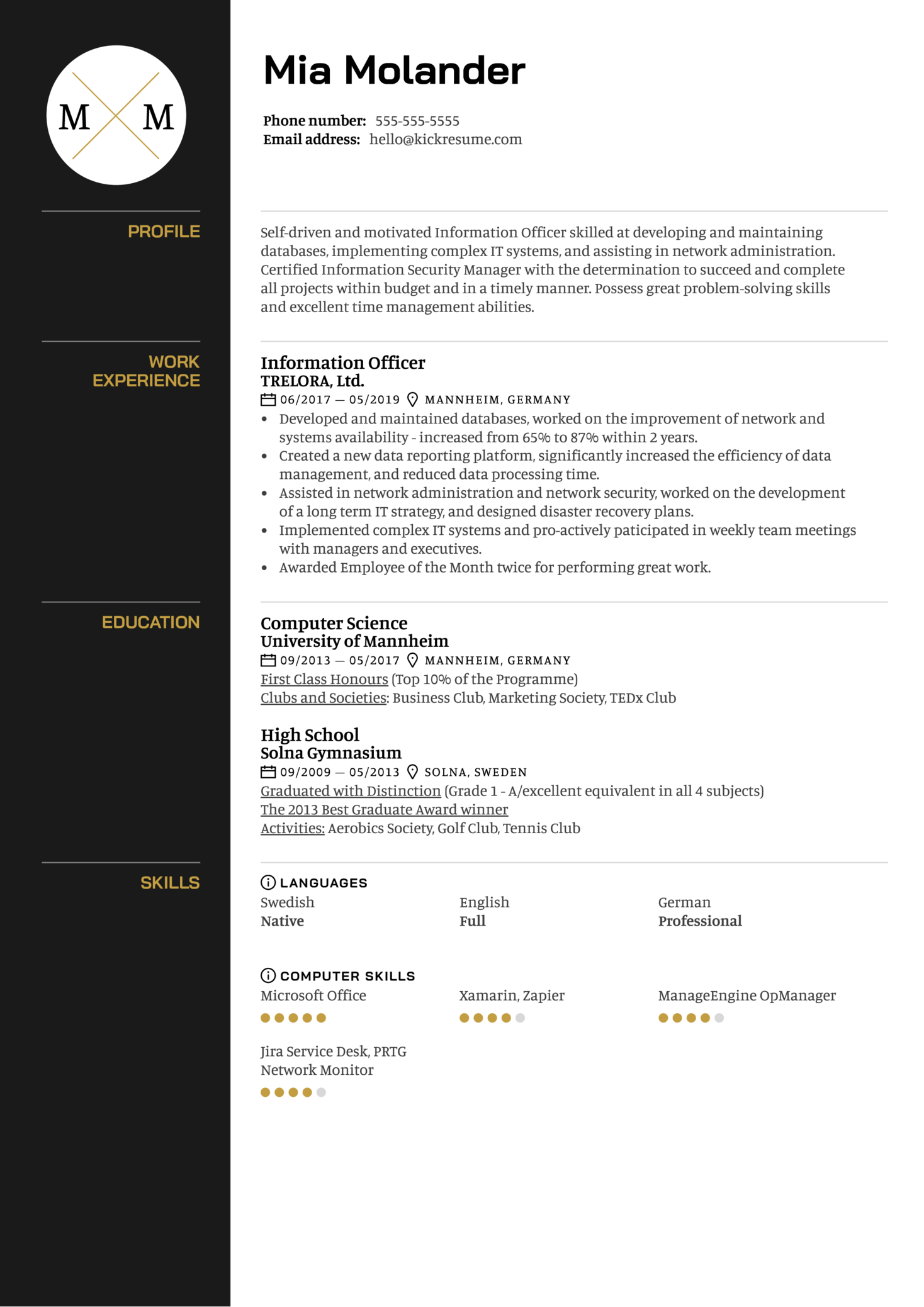 Information Officer Resume Template (Teil 1)