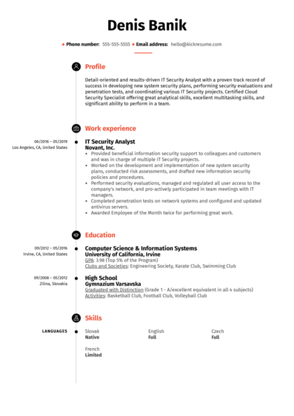 IT Security Analyst Resume Sample