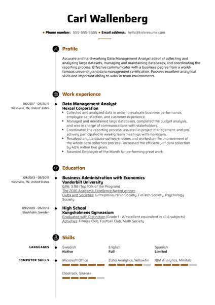 Data Management Analyst Resume Example