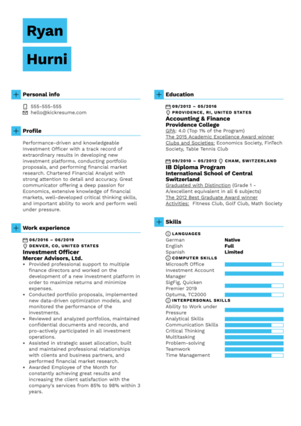 Investment Officer Resume Example